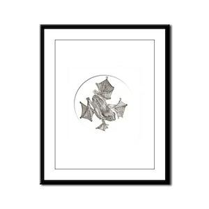 Amphibian Study in Ink Framed Panel Print