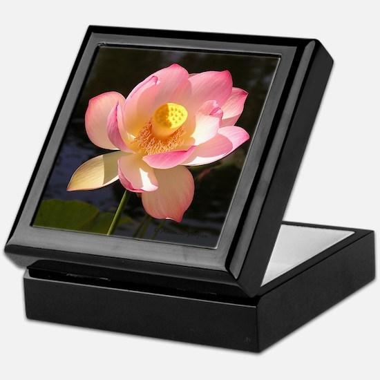 Waterlily Keepsake Box