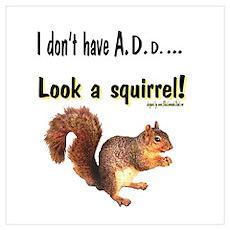 ADD Squirrel Poster