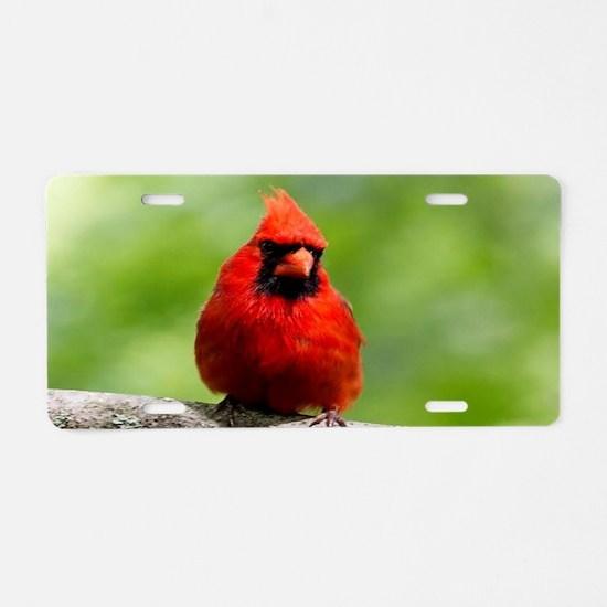 Red Cardinal Aluminum License Plate