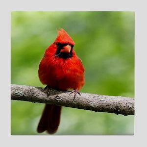 Red Cardinal Tile Coaster