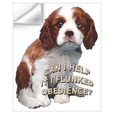 cavalier obedience Wall Decal