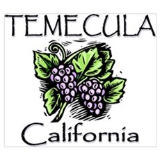 Temecula Grapes Poster