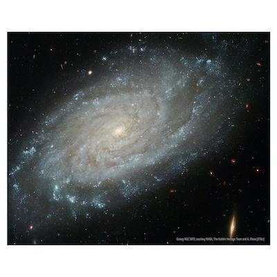 Spiral Galaxy NGC3370 Poster