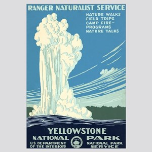 1930s Vintage Yellowstone National Park Framed Pan