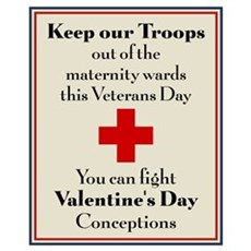 Veterans Day Babies Poster
