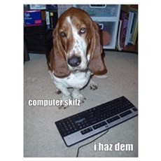 Computer Skilz Poster