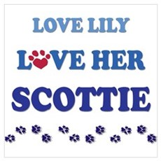 Love Lily Love Her Scottie Poster