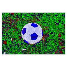 Soccer Ball In Grass Poster