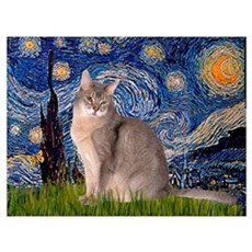 Starry / Blue Abyssinian cat Canvas Art