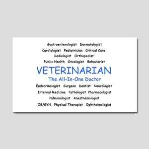 Veterinarian The All-In-One D Car Magnet 20 x 12