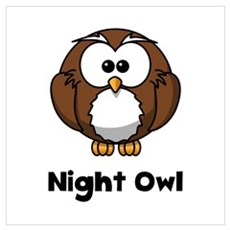 Night Owl Canvas Art