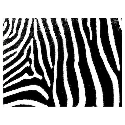 Helaine's Zebra Pattern Poster