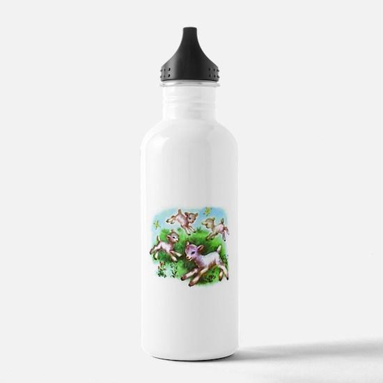 Cute Sheep Baby Lambs Water Bottle