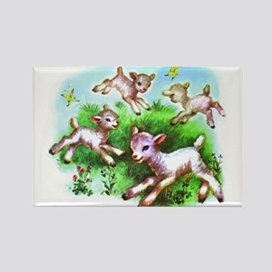 Cute Sheep Baby Lambs Rectangle Magnet