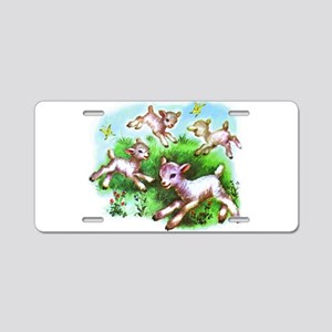 Cute Sheep Baby Lambs Aluminum License Plate