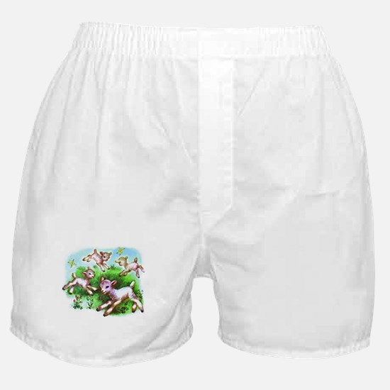 Cute Sheep Baby Lambs Boxer Shorts