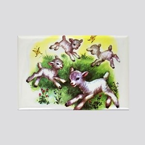 Funny Lambs White Sheep Rectangle Magnet