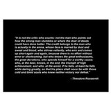 Teddy roosevelt quotes Posters