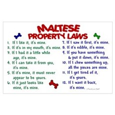 Maltese Property Laws 2 Poster