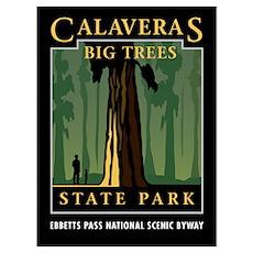 Big Trees Poster
