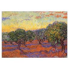Van Gogh Olive Grove Poster