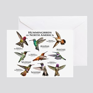 Hummingbirds of North America Greeting Card
