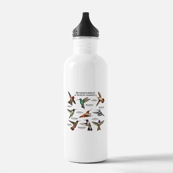 Hummingbirds of North America Water Bottle