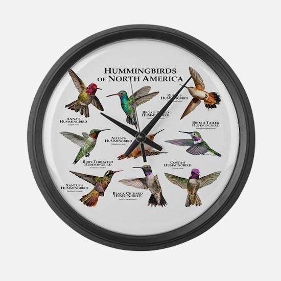Hummingbirds of North America Large Wall Clock