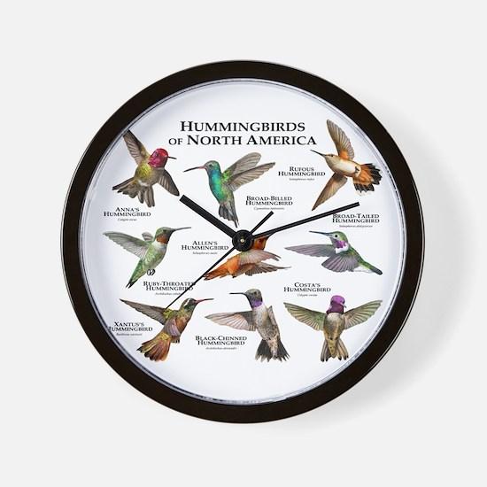 Hummingbirds of North America Wall Clock