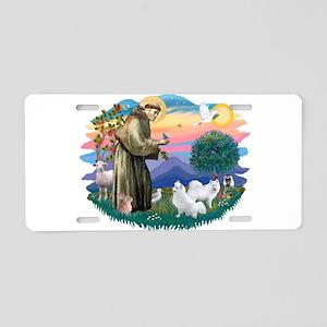 St.Francis #2/ Am Eskimo (2) Aluminum License Plat