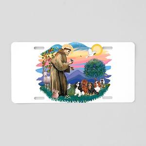 St Francis #2/ Cavaliers Aluminum License Plate