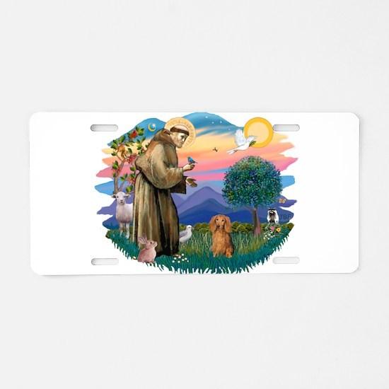 St.Fran #2/ Dachshund (LH-S) Aluminum License Plat
