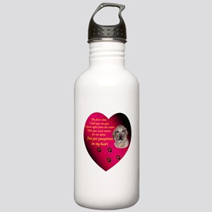 Pawprints Stainless Water Bottle 1.0L