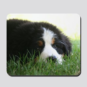 Bernese Puppy Mousepad