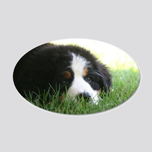 Bernese Puppy 20x12 Oval Wall Decal