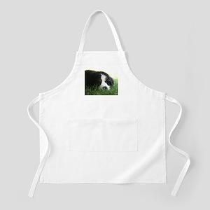 Bernese Puppy Apron