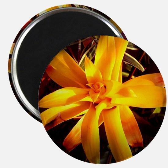 yellow flower Magnet