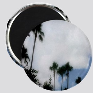 cloudy palms Magnet