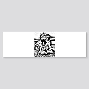 TEENAGE BRIARD Bumper Sticker