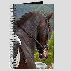 Dressage Journal