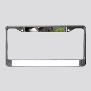 Dressage License Plate Frame
