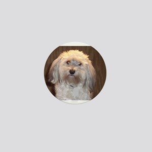 havanese Mini Button