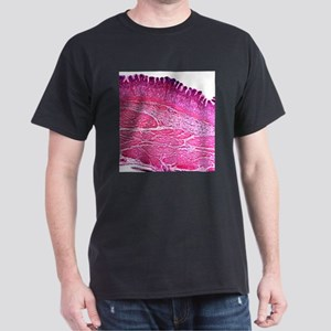 Small intestine section, light micro T-Shirt