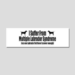 Labrador Retriever Car Magnet 10 x 3