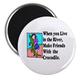 Crocodile Magnet