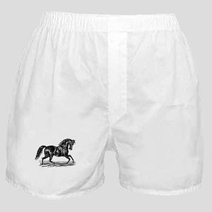 Shiny Black Stallion Horse Boxer Shorts