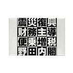 Zouzei Rectangle Magnet (100 pack)