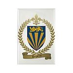 DUPERRE Family Crest Rectangle Magnet (10 pack)