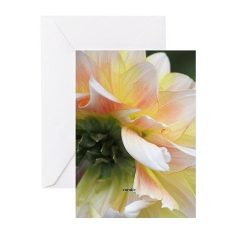 Dahlia in the garden Greeting Cards